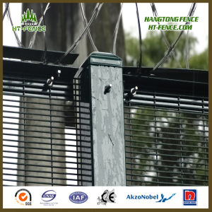High Security Anti Climb Razor Wire Fencing pictures & photos