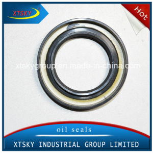 Xtsky High Quality Oil Seal (33142-33G10) pictures & photos