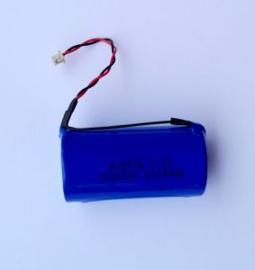Lithium-Ion Battery Packs pictures & photos