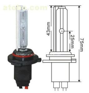 12V/24V 35W/50W H10 HID Xenon Bulb Super Bright HID Xenon Lamp pictures & photos