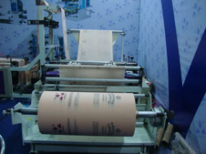 Automatic Nonwoven Bag Making Machine (WFB600) pictures & photos