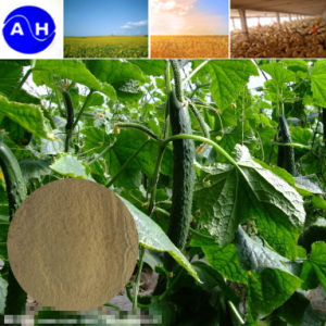 Boron Amin Acid Chelate for Organic Agriculture pictures & photos