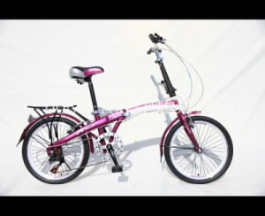Folding Bicycle From Factory Sell Directly (HC-FD-2059) pictures & photos