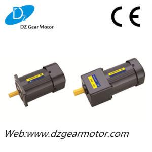 Micro Induction AC Gear Motor (CE) (6W-180W)