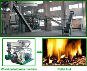 Biomass Wood Dust Pellet Mill/Wood Dust Press Line pictures & photos
