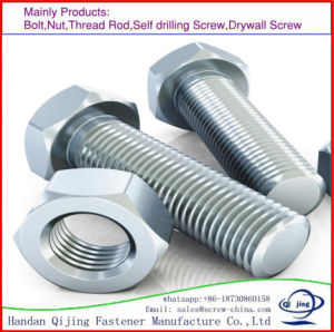 Stainless Steel Bolt with Nut pictures & photos