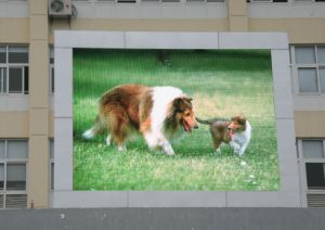 Advertising P10 Outdoor LED Sign Board