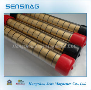 Powerful Permanent NdFeB Magnet Assembly for Motor pictures & photos