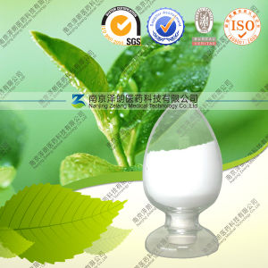 Natural L-Theanine Green Tea Extract for Beverage pictures & photos