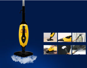 10-in-1 Upright and Handheld Steam Mop (KB-2012) pictures & photos