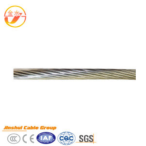 Bare Aluminum Conductor AAC/AAAC/ACSR All Aluminum Alloy Conductor AAAC pictures & photos