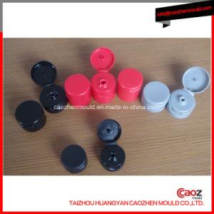 Plastic Injection Shampoo Bottle /Flap Cap Mould pictures & photos