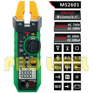 6000 Counts Digital AC and DC Fork Meter (MS2601) pictures & photos