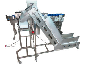 IP69 Automatic Weight Sorting Food Machine pictures & photos