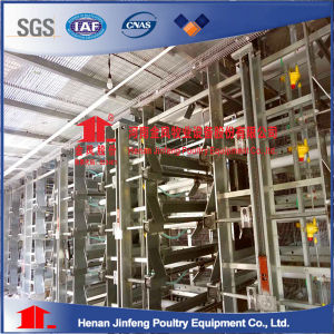 H Frame Layer Automated Battery Poultry Equipment Chicken Cage pictures & photos