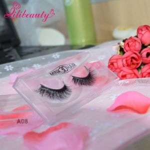 Hot Selling Free Sample Mink 3D Hair Eyelashes pictures & photos