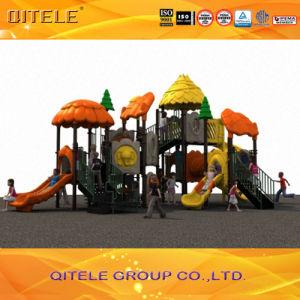 Kids Amusement Park Outdoor Playground Equipment (2014WPII-09301) pictures & photos