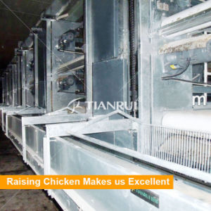 Chicken Farm Poultry Excrement Manure Removal System pictures & photos