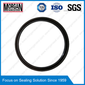 J Type R35 Series Fabric Reinforced Oil Seal pictures & photos