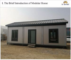 Flat Pack Container House for Living pictures & photos