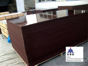 Shuttering Plywood pictures & photos