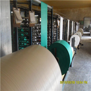 PP Woven Polypropylene Fabric in Roll pictures & photos