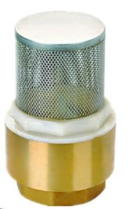Lead-Free Brass Spring Loaded in-Line Check Valve pictures & photos