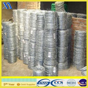 Hot Dipped Galvanized Barbed Wire (XA-BW007) pictures & photos