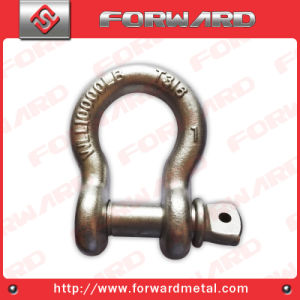 T316 Stainless Steel Bow Shackle Us Type T316 Shackle G209 pictures & photos