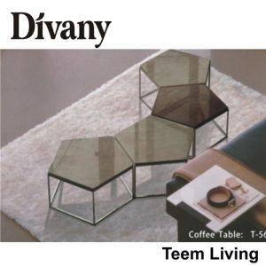Divany Turkish Furniture Coffee Table Modern Style T-56 pictures & photos