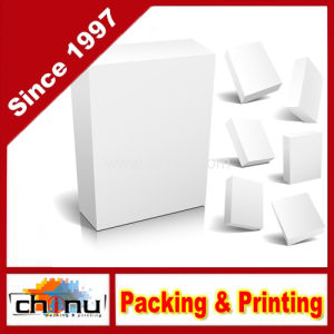 Paper Gift Packaging Corrugated Box (1102) pictures & photos