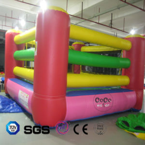 Coco Water Design Inflatable Boxer Ring LG9085 pictures & photos