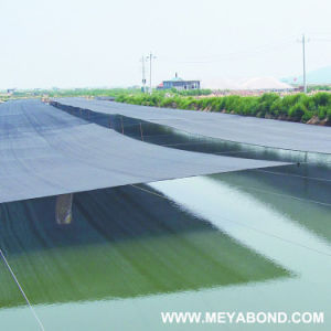 HDPE Shading Net HDPE Sunshade Net for Agriculture and Aquaculture pictures & photos