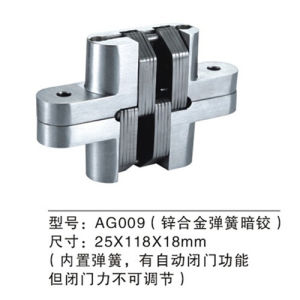 High Quality Zinc Alloy Concealed Door Hinge (AG009) pictures & photos