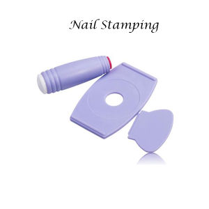 Nail Art Stamp Plate pictures & photos