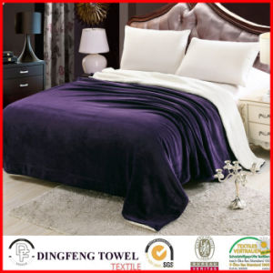 Double Layer Blanket Coral Fleece Wool Terry Loop Df-9920 pictures & photos
