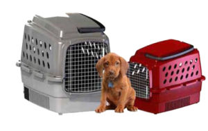 Airconditioned Pet Carrier and House Keep Your Pet at The Best Temperature Condition