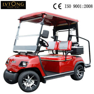 2 Seater Battery Power Electric Sightseeing Car pictures & photos