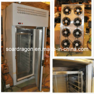 Commercial Meat Blast Freezer with 120kg Capacity pictures & photos