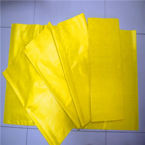 China PP Woven Bag pictures & photos