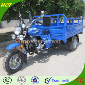 High Quality Chongqing Adult Tricycle pictures & photos