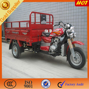 Electric Cargo & Passenger Three Wheel Vehicle Tricycle pictures & photos