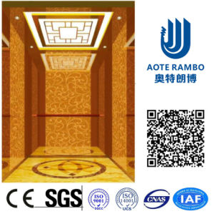 German Technology Residential Home Lift in Passenger Elevator (RLS-222) pictures & photos