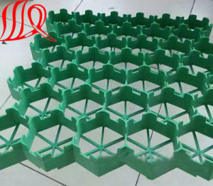 HDPE Gravel Grid Grid Grass Grid Pavers for Driveway pictures & photos