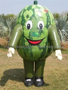 Inflatable Costumes, Advertising Costume, Hot Sale Costume (K6011) pictures & photos