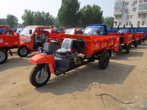 Chinese Diesel Engine Famous Brand Three Wheel Truck pictures & photos