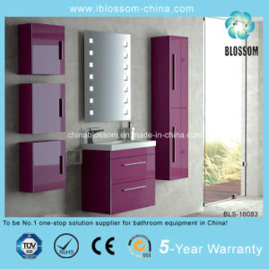 Four Side Cabinets Ceramic Basin Bathroom Cabinet (BLS-16083) pictures & photos
