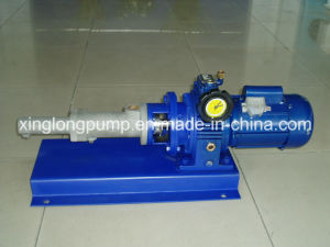 Xinglong Mini Single Screw Pump Used for Dosing and Metering Polymer, Medicine or Other Liquids pictures & photos