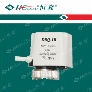 Drf-01 Electric Actuator pictures & photos