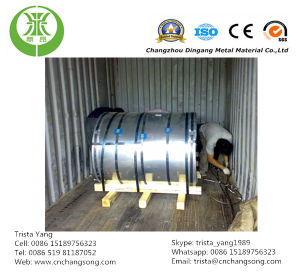 Prepainted Galvanized Steel Coil/Sheet (PPGI, PPGL) pictures & photos